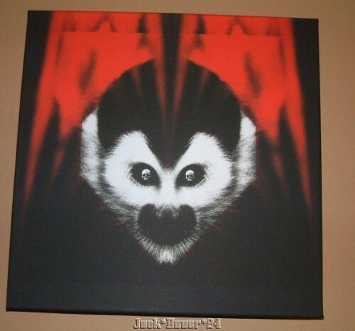 White Stripes Third Man Records Vault 23 Under Amazonian Lights DVD Vinyl Record - $199.99