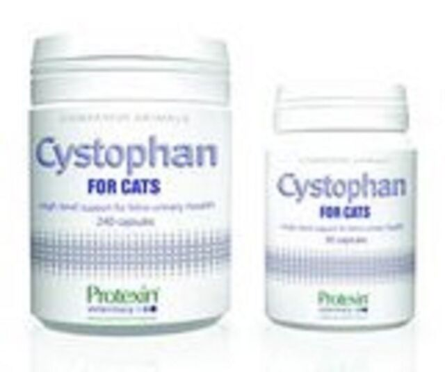 Protexin Cystophan for Cats, 240, Premium Service Fast Dispatch