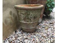 Terracotta round pot (used)