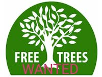 Trees wanted