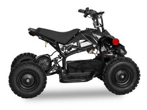 Sasquatch Mini 1000 W Mini ATV