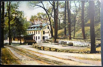 Postcard Mineral Springs Hotel Reading PA Pennsylvania Tinted Image (Hotel Reading)
