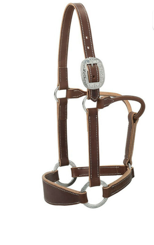 Weaver Leather Weaver Stacy Westfall Bronc Halter MQHA 2019 Award Made in USA
