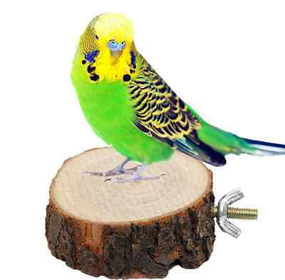 Round Wooden Squirrel Parrot Bird Perch Stand Platform Pet Bird Hanging Toy Cool