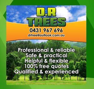 D.R TREES home & gardening Bankstown Bankstown Area Preview