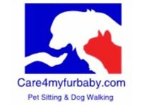 Pet Sitter - Kind and Patient - Care4myfurbaby