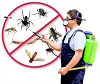 100% Guaranteed Pest Control Service with Money Back Guarantee!!