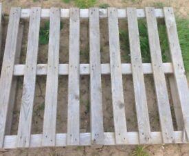 Standard & Large Wooden Pallets (Standard = £1 Large = £3)