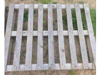 11 Wooden Pallets - Bargain - £10