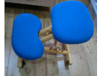 Kneeling Ergonomic Office Chair Blue Hardwood