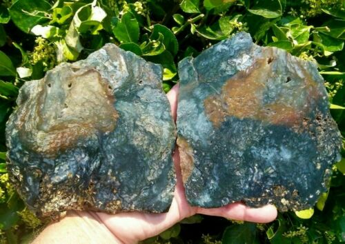 TWO (2) LARGE HIGH QUALITY MOSS AGATE SLAB RARE CENTRAL OREGON GREEN ORANGE 1.5#