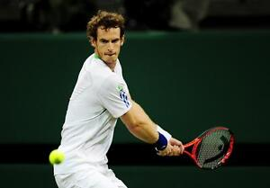ANDY-MURRAY-FRAMED-PHOTO-IMAGE-PICTURE-WIMBLEDON-MOUNTED-IN-GOLD-10-X-8-FRAME