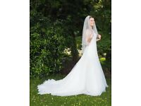 Pronovias Wedding Dress - Size 8