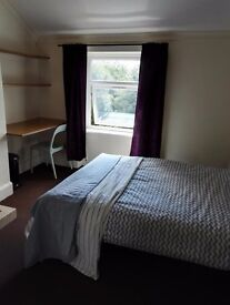 Gd sized rm, WiFi, wkly cleaner, 5 mins to Sefton Pk, Park Rd, 5 to city by bus