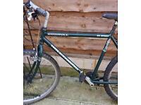Holdsworth bike adult