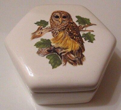 Vintage Barred Owl White Glazed Trinket Box Hexagon Shape
