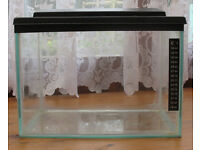 Small Aquarium / Vivarium / Terrarium (13 Litres) - PRICE REDUCED