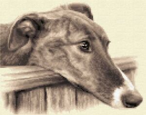 BRINDLE GREYHOUND dog complete counted cross stitch kit