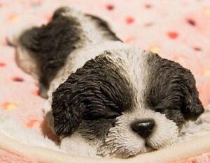 Lying Down Sleeping Shih Tzu Puppy B/W - Life Like Figurine Statue Home / Garden