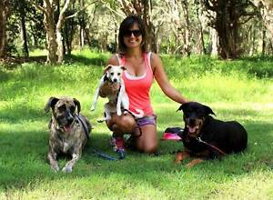 Canine Journeys - Dog Training & Behaviour Specialist Robina Gold Coast South Preview