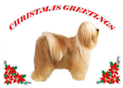 TIBETAN TERRIER SINGLE DOG PRINT GREETING CHRISTMAS CARD