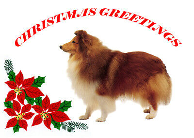 SHETLAND SHEEPDOG SHELTIE SINGLE DOG PRINT GREETING CHRISTMAS CARD