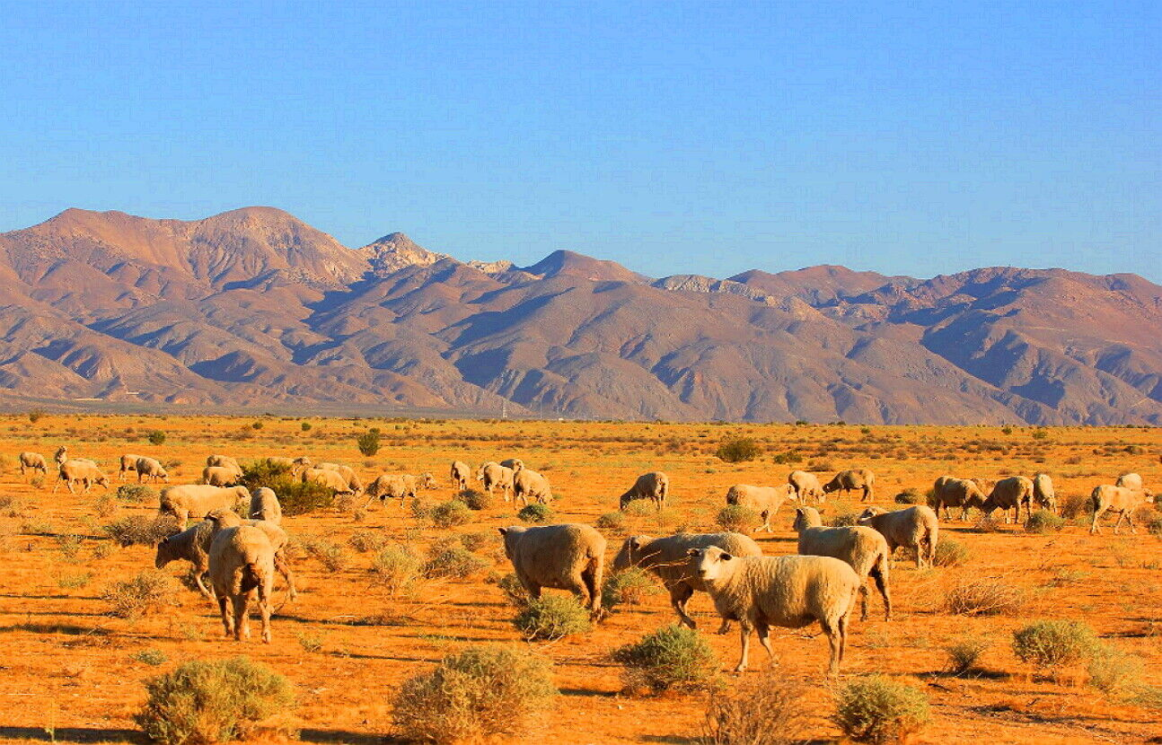 2.3 Acres, Wind Power HOMESITE Mojave, CA KERN COUNTY - $2,350.00