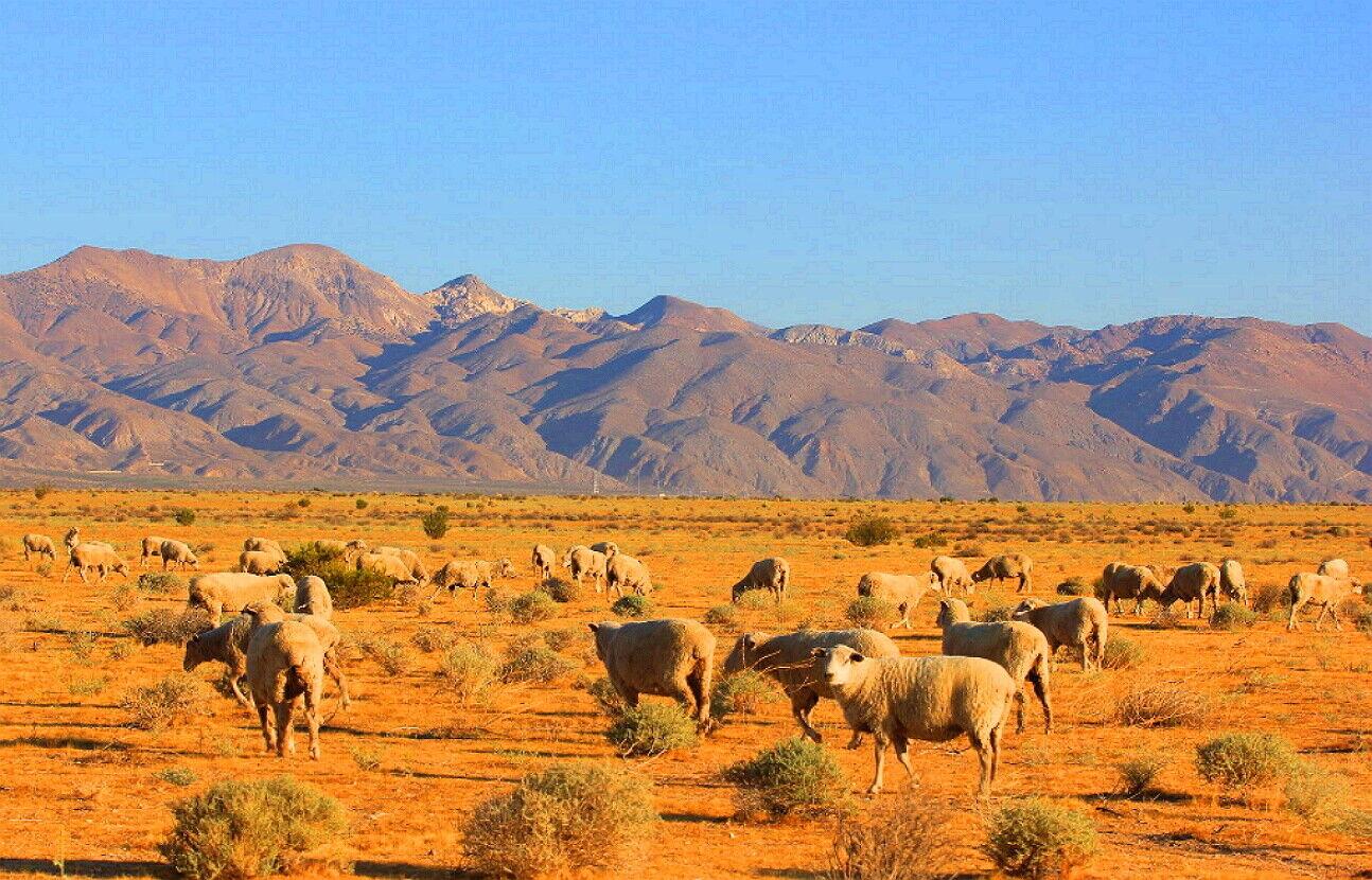2.3 Acres, Wind Power HOMESITE Mojave, CA KERN COUNTY