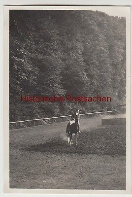 (F12303) Orig. Foto Reit-Turnier in ? 1929, Hans Körffer a.d. Sattelplatz