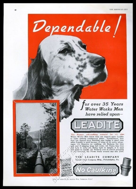 1937 English Setter nice photo Leadite pipe cement vintage trade print ad