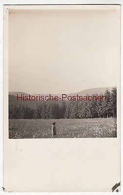 (F12693) Orig. Foto Gehlberg / Thür. 1930, Klein Ursula auf der Blumenwiese am A
