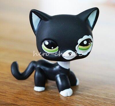 Rare Black Cat Green Eyes Flower Patch Hasbro Littlest Pet Shop LPS Toys #2249