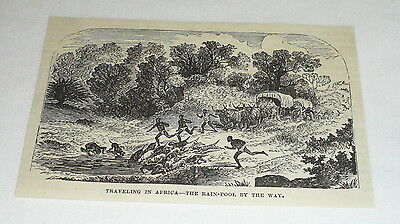 1877 magazine engraving ~ THE RAIN-POOL BY THE WAY