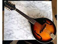 Ozark 2071 Mandolin with Hard Shell Case