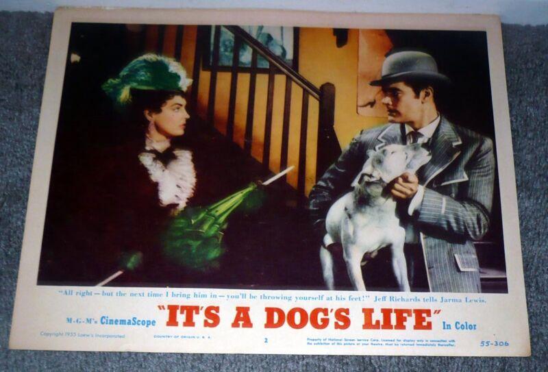 BULL TERRIER/JEFF RICHARDS orig 1955 movie lobby card poster IT