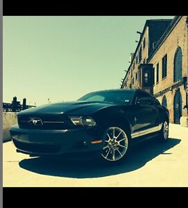 Mustang Pony package for sale