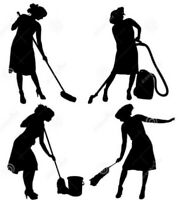 Experienced Cleaning Lady / Decluttering & Organizing Services