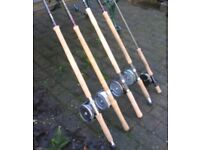 Great salmon as trout fishing rods for sale