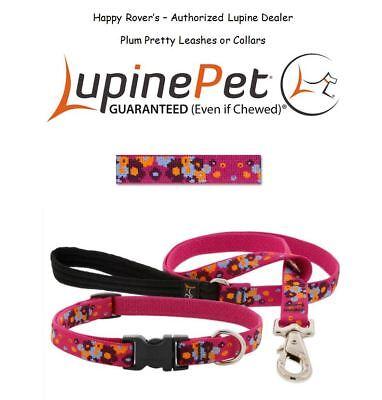 "Lupine Lifetime Dog Collar or Leash - 3/4""-LIMITED EDITION  FLOWERS- PLUM PRETTY"