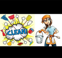 Experienced House Cleaner HRM