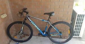 Everest mountain bike
