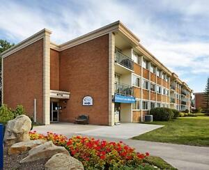 2 Bedroom Apartments in Acadia! Bonaventure & Southland drive