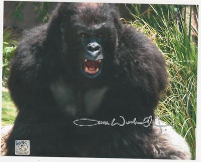 Tom Woodruff jr. - Gorilla signed photo
