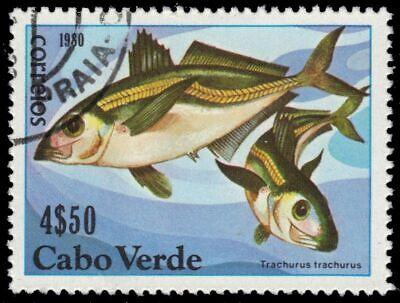"""CAPE VERDE 411 - Horse Mackerel """"Trachurus trachurus"""" (pa57688)"""