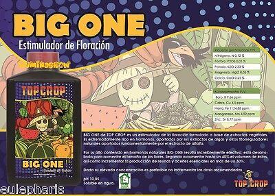 BIG ONE 250ml Abono Bio-estimulador de Floracion Organico, Fertilizante TOP CROP
