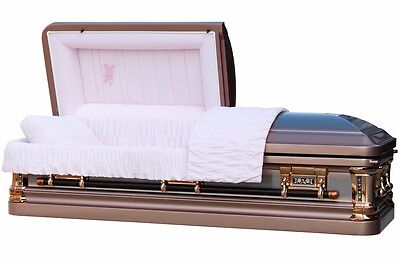 Funeral Casket Silver Rose Brush With Pink Velvet Interior Coffin