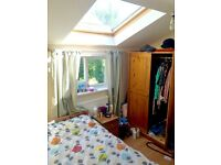Double room in friendly houseshare on Mill Road