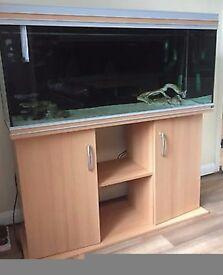 4ft rena fish tank