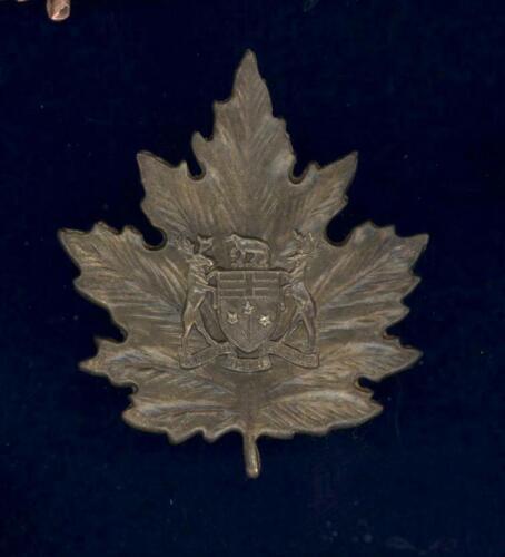 Obsolete- Ontario Provincial Institutions -  hat badge