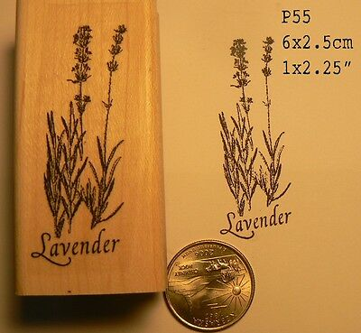 как выглядит Штамп, аксессуары Lavender flowers rubber stamp WM P55 фото